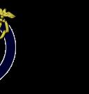 PYC Logo - May 2015 Text Final - Copy